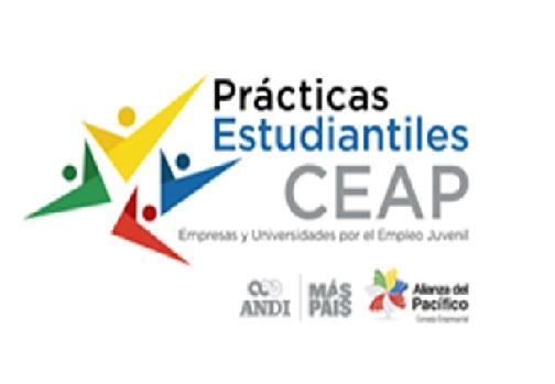 Oferta de Prácticas Profesionales Virtuales en el extranjero