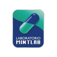 Laboratorio Mintlab necesita contratar estudiante en práctica de Ingeniería Civil o Ejecución Industrial